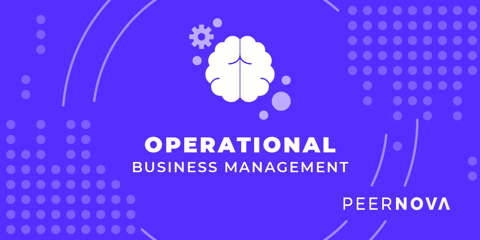 PeerNova's Operational Business Management Tool