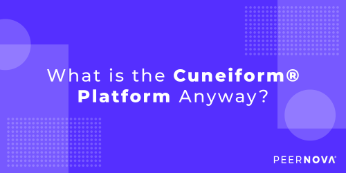 What is the Cuneiform Platform Anyway?
