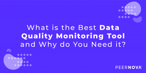 What is the Best Data Quality Monitoring Tool